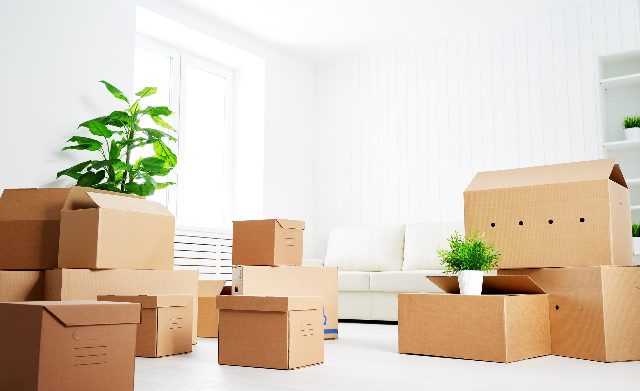 ottawa residential moving boyd moving ottawa moving company